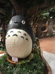 Totoroooo