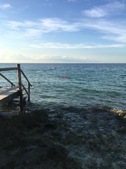 SkyReef snorkeling