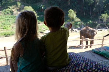 Na verande slonieho kempu