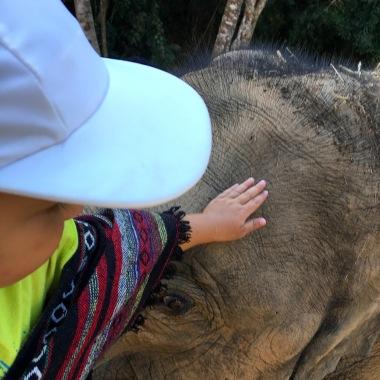 Dve sloníčatá :-)