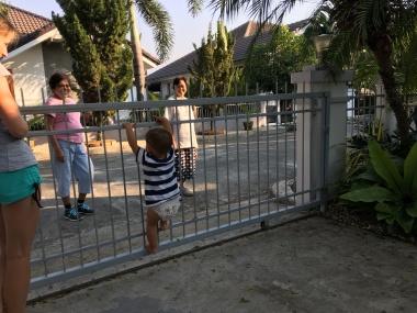 Susedky na prechádzke