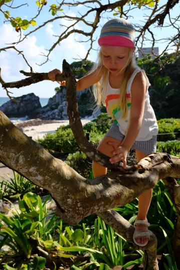 Vylieli na každý strom - Tulum ruins