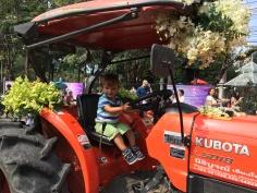 Festival kvetín - traktor